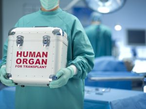 What You Need to Know About Organ Donation